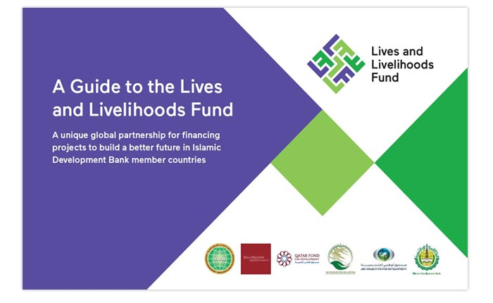 Scriptoria writes user-friendly guide to the Lives and Livelihoods Fund