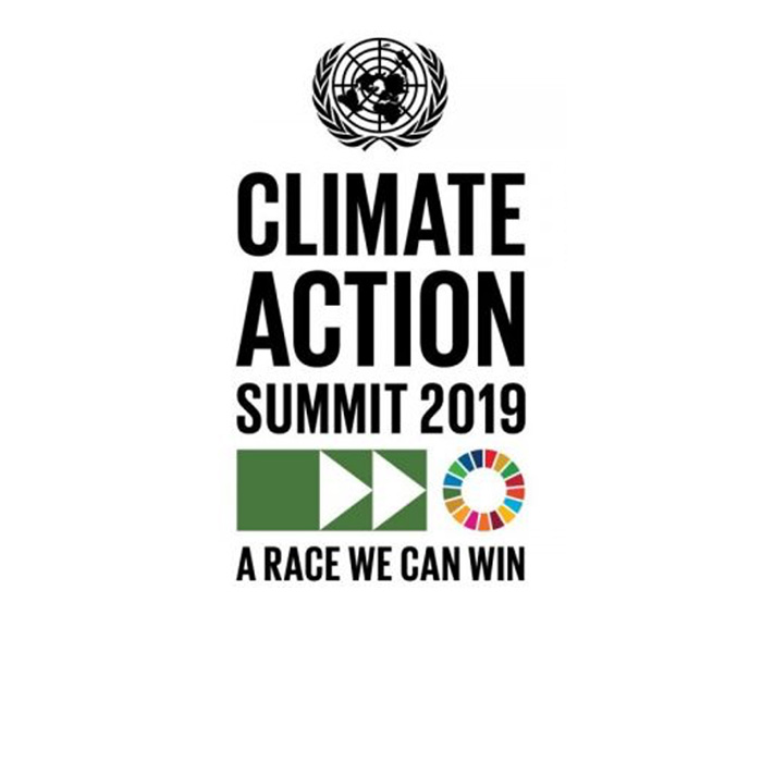 CRIDF – The road to the UN Climate Action Summit