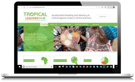 Tropical Legumes Hub consolidates learning from global food legume initiatives